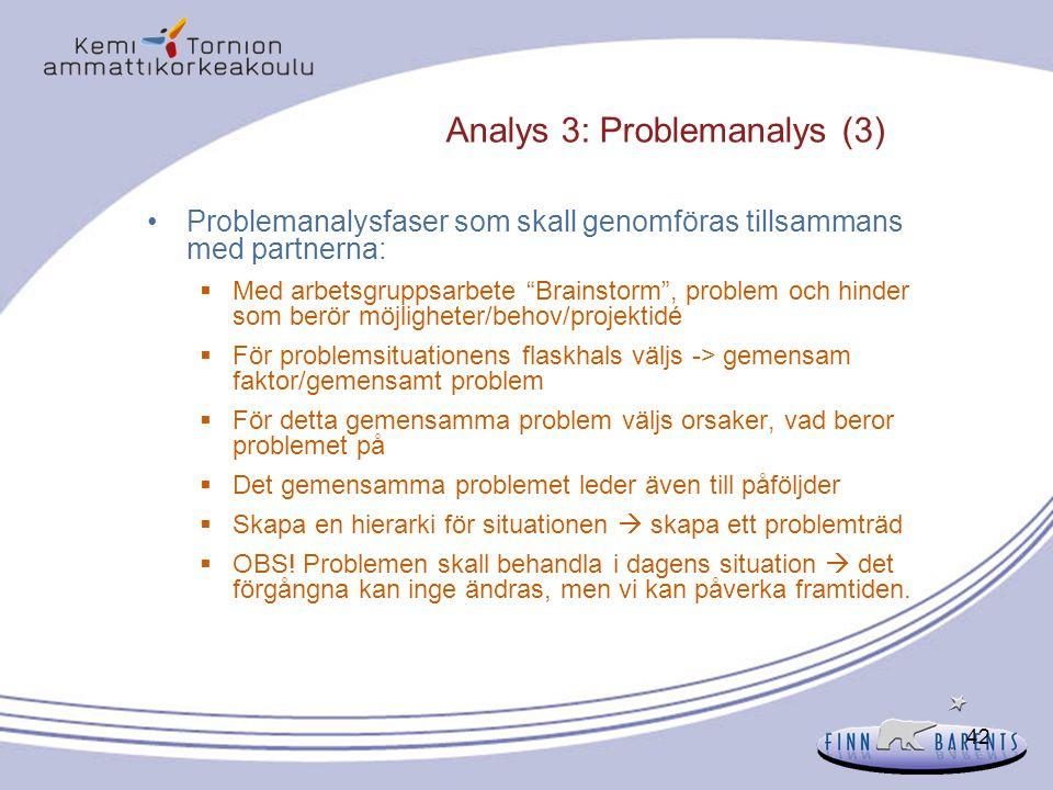 """42 Analys 3: Problemanalys (3) Problemanalysfaser som skall genomföras tillsammans med partnerna:  Med arbetsgruppsarbete """"Brainstorm"""", problem och h"""