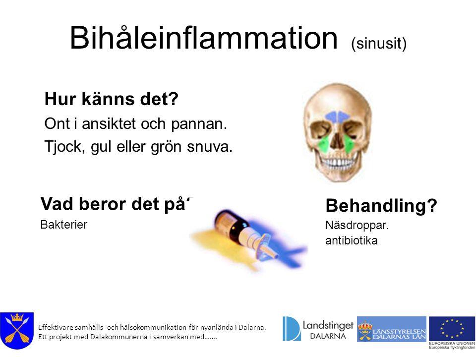 Effektivare samhälls- och hälsokommunikation för nyanlända i Dalarna. Ett projekt med Dalakommunerna i samverkan med……. Bihåleinflammation (sinusit) H