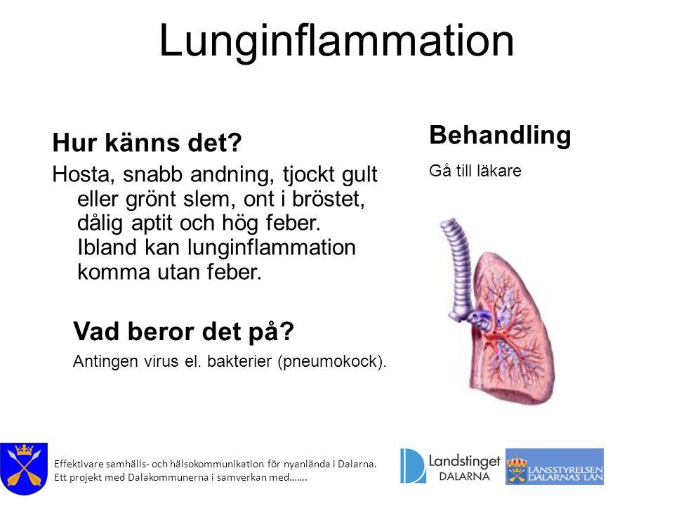 Effektivare samhälls- och hälsokommunikation för nyanlända i Dalarna. Ett projekt med Dalakommunerna i samverkan med……. Lunginflammation Hur känns det