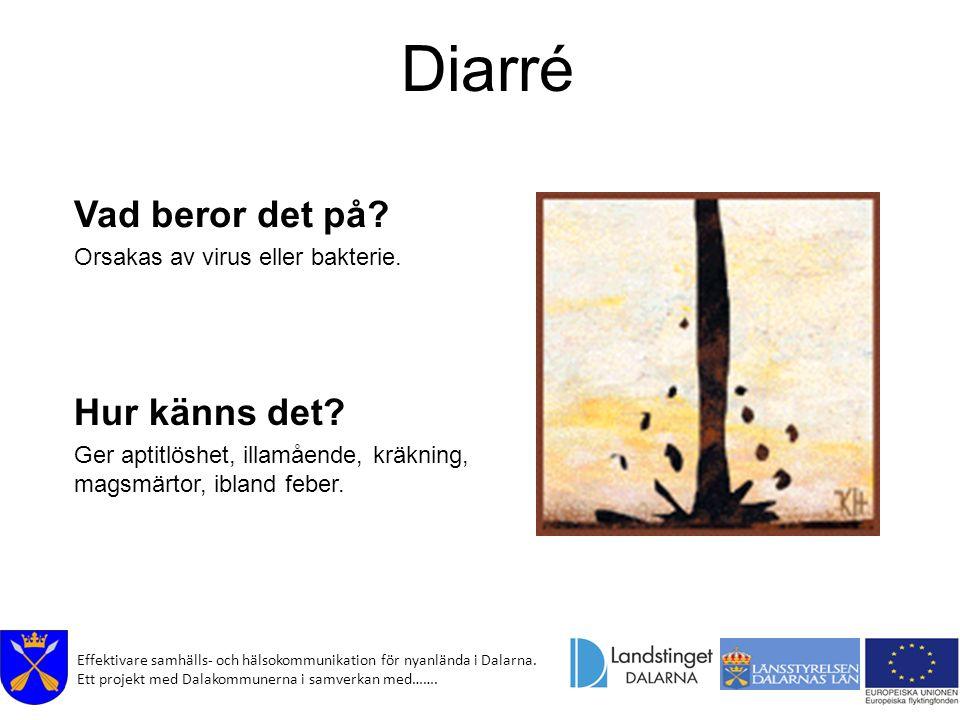 Effektivare samhälls- och hälsokommunikation för nyanlända i Dalarna. Ett projekt med Dalakommunerna i samverkan med……. Diarré Vad beror det på? Orsak