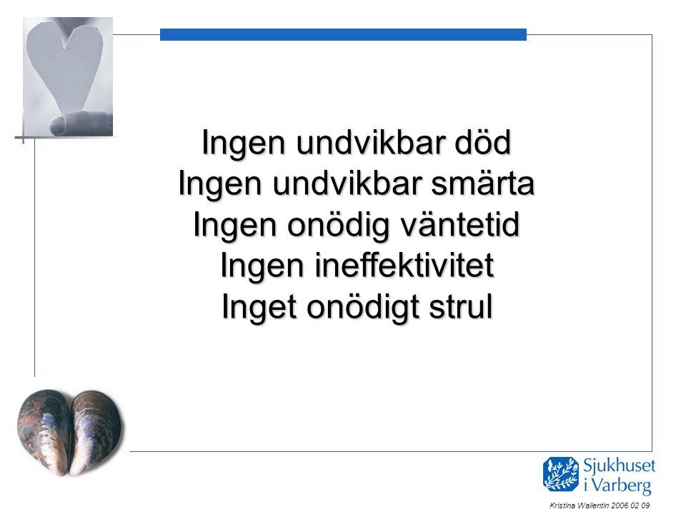 Ingen undvikbar död Ingen undvikbar smärta Ingen onödig väntetid Ingen ineffektivitet Inget onödigt strul Kristina Wallentin 2006 02 09