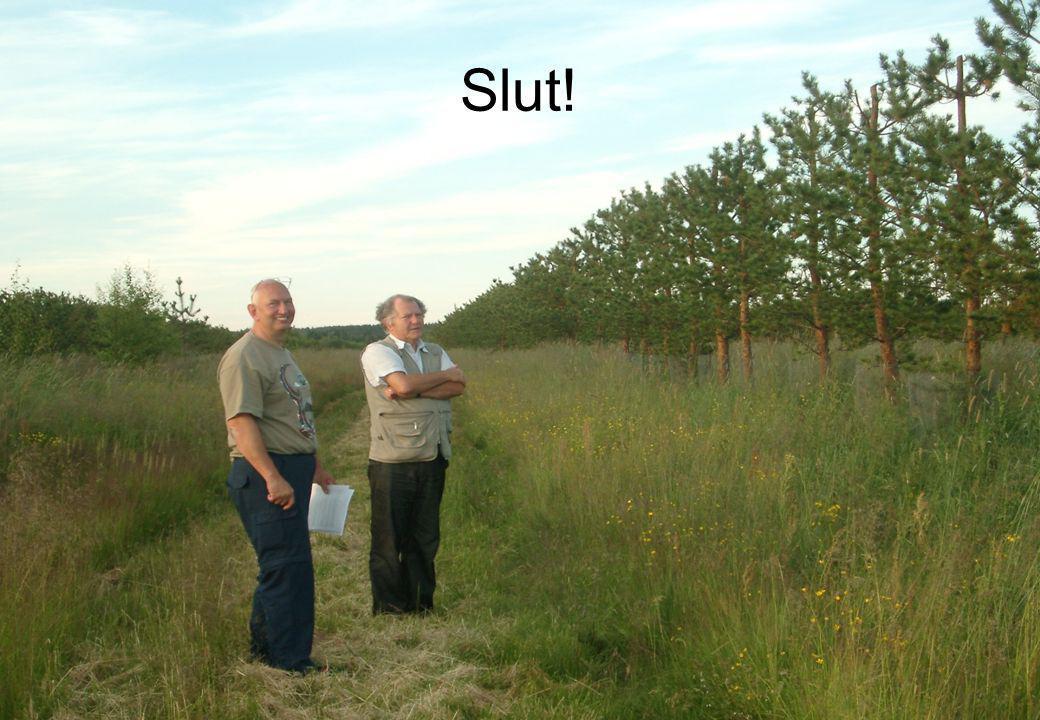 17 Slut!