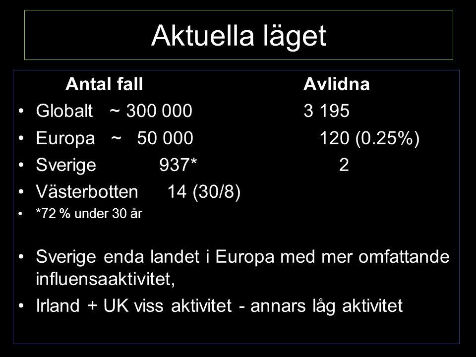 Aktuella läget Antal fallAvlidna Globalt ~ 300 0003 195 Europa ~ 50 000 120 (0.25%) Sverige 937* 2 Västerbotten 14 (30/8) *72 % under 30 år Sverige enda landet i Europa med mer omfattande influensaaktivitet, Irland + UK viss aktivitet - annars låg aktivitet