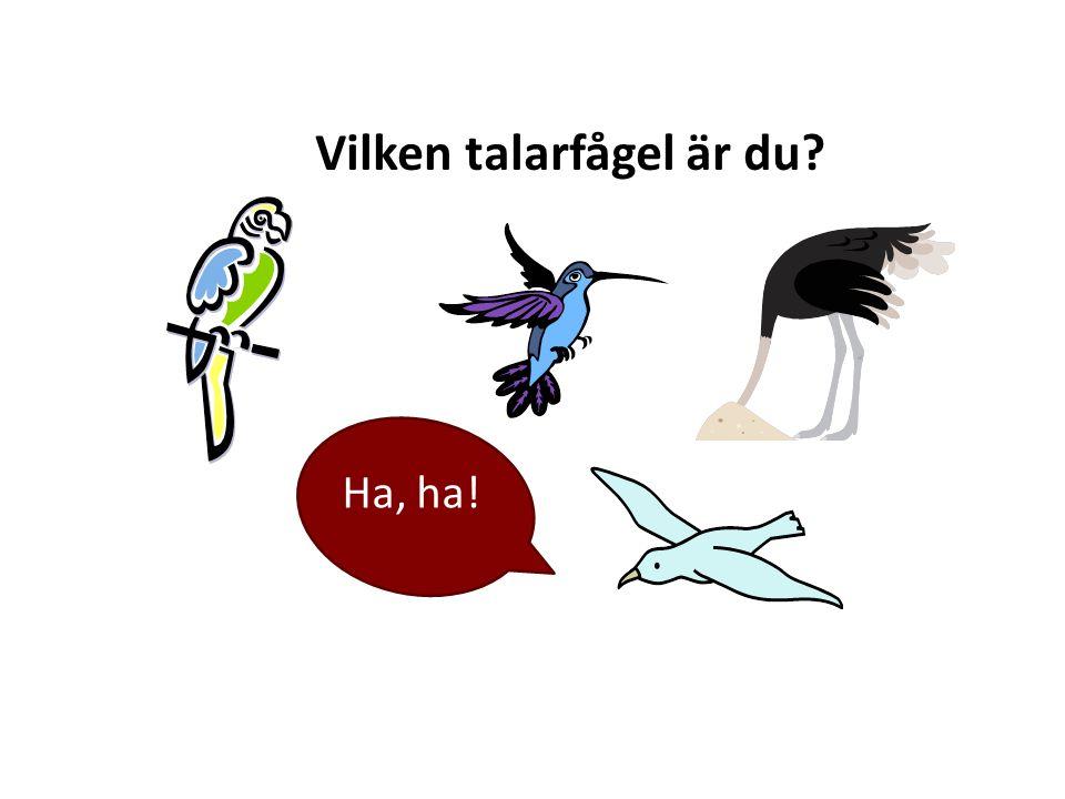 Vilken talarfågel är du? Ha, ha!