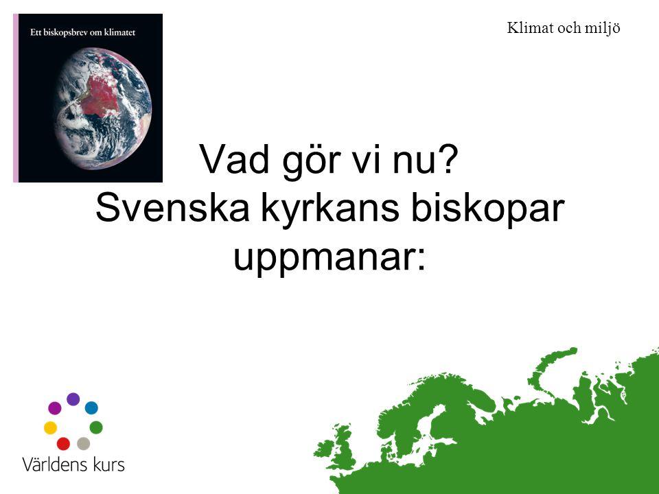 Klimat och miljö Vad gör vi nu? Svenska kyrkans biskopar uppmanar: