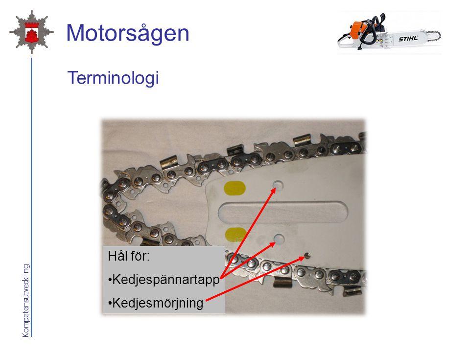 Kompetensutveckling Motorsågen Hål för: Kedjespännartapp Kedjesmörjning Terminologi