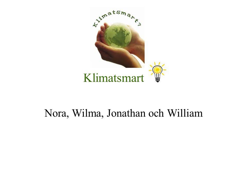 Klimatsmart Nora, Wilma, Jonathan och William