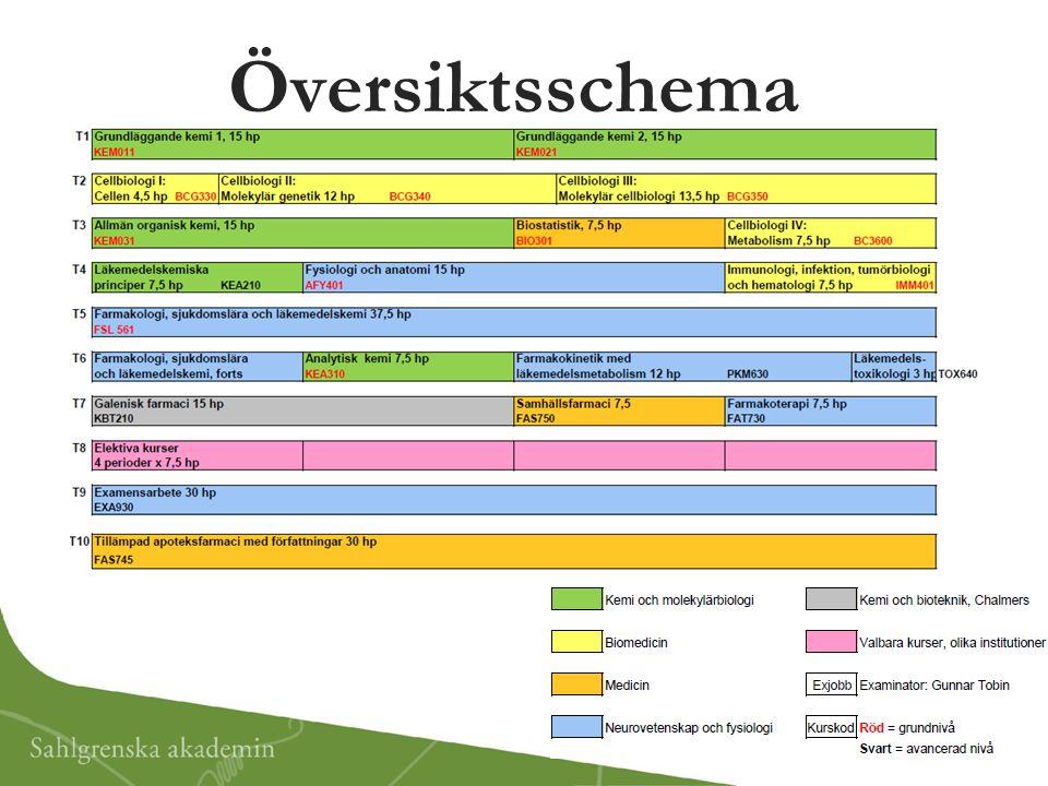 Översiktsschema