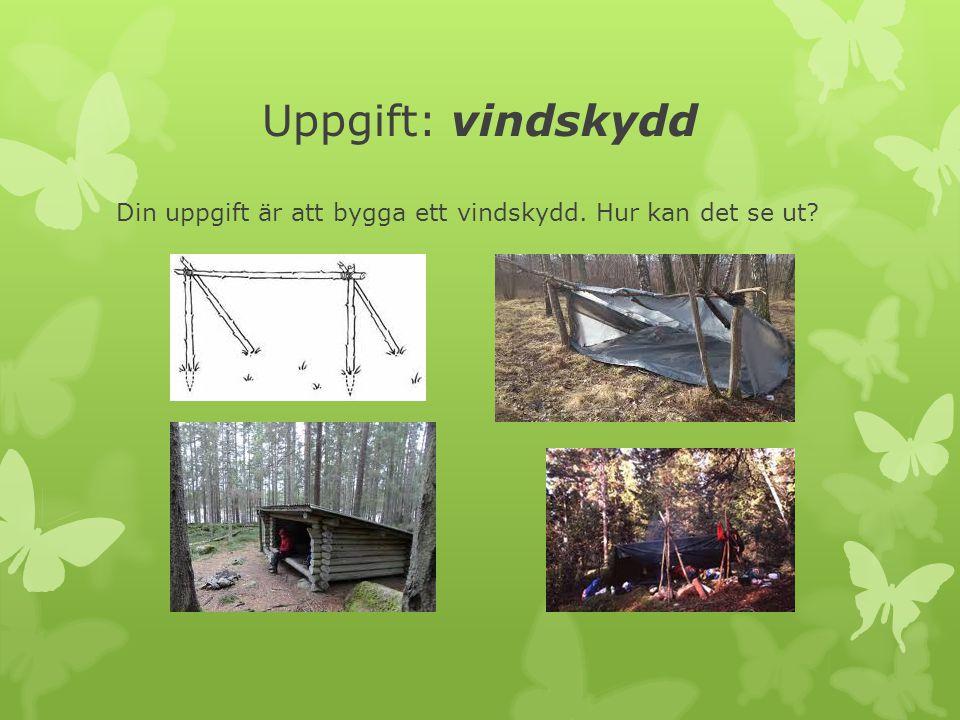 Uppgift: vindskydd Din uppgift är att bygga ett vindskydd. Hur kan det se ut?