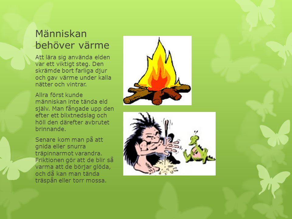 Människan behöver värme Att lära sig använda elden var ett viktigt steg. Den skrämde bort farliga djur och gav värme under kalla nätter och vintrar. A