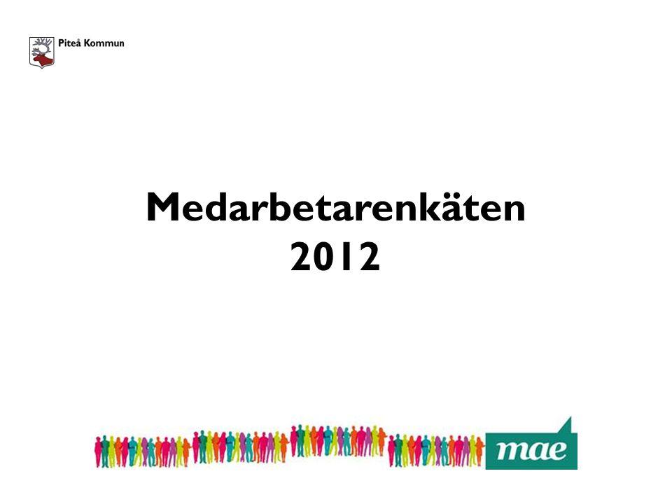 Tidplan Supportorganisation Checklista Hemsida: pitea.se/mae Årets enkät