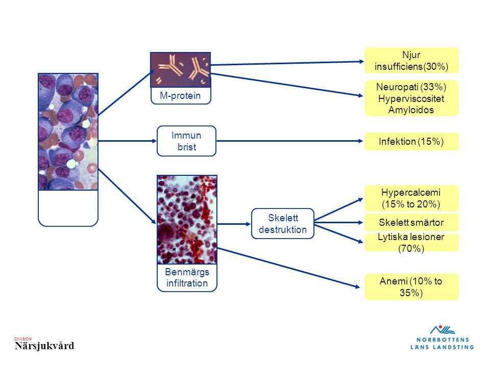 DIVISION Närsjukvård M-protein Skelett smärtor Neuropati (33%) Hyperviscositet Amyloidos Hypercalcemi (15% to 20%) Immun brist Anemi (10% to 35%) Lyti