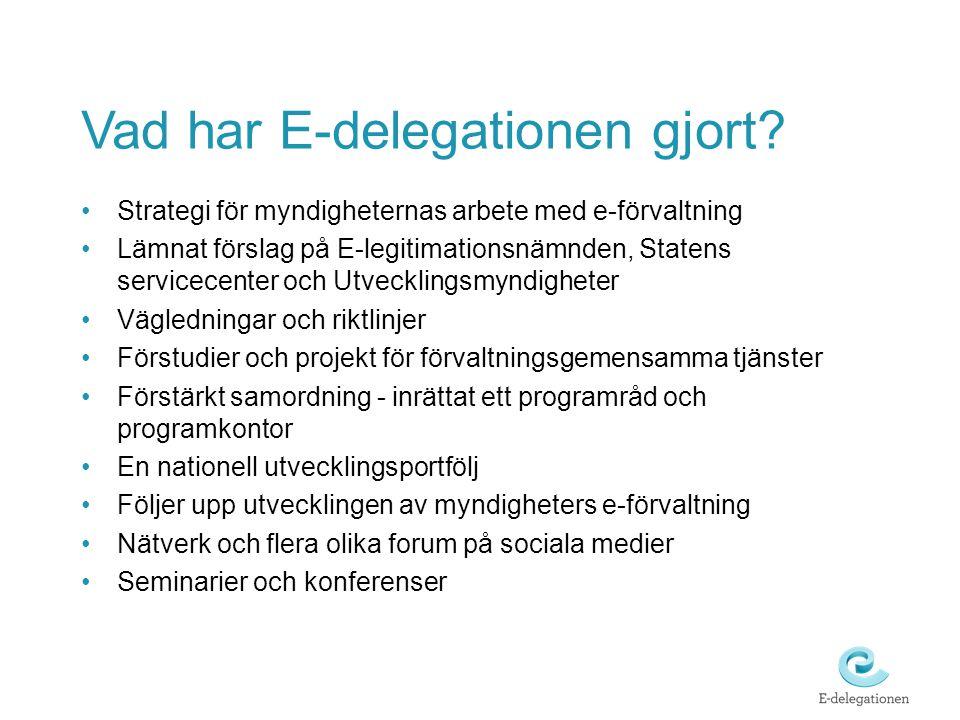 Vad har E-delegationen gjort.