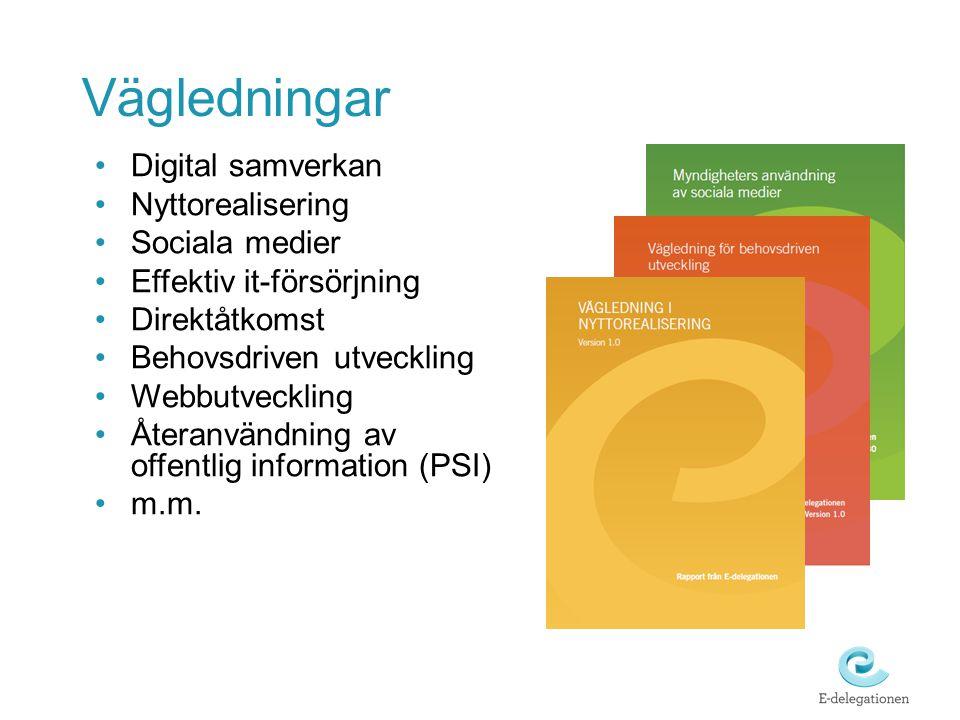 Digital samverkan Nyttorealisering Sociala medier Effektiv it-försörjning Direktåtkomst Behovsdriven utveckling Webbutveckling Återanvändning av offentlig information (PSI) m.m.
