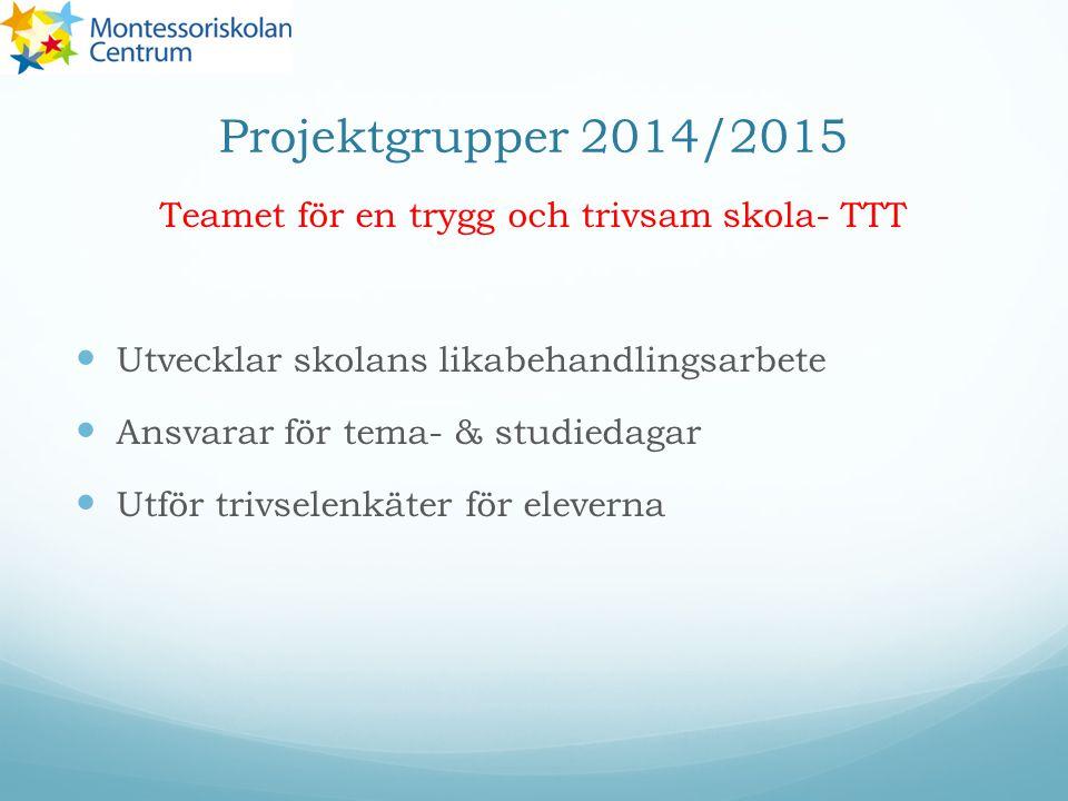 Projektgrupper 2014/2015 Teamet för en trygg och trivsam skola- TTT Utvecklar skolans likabehandlingsarbete Ansvarar för tema- & studiedagar Utför trivselenkäter för eleverna