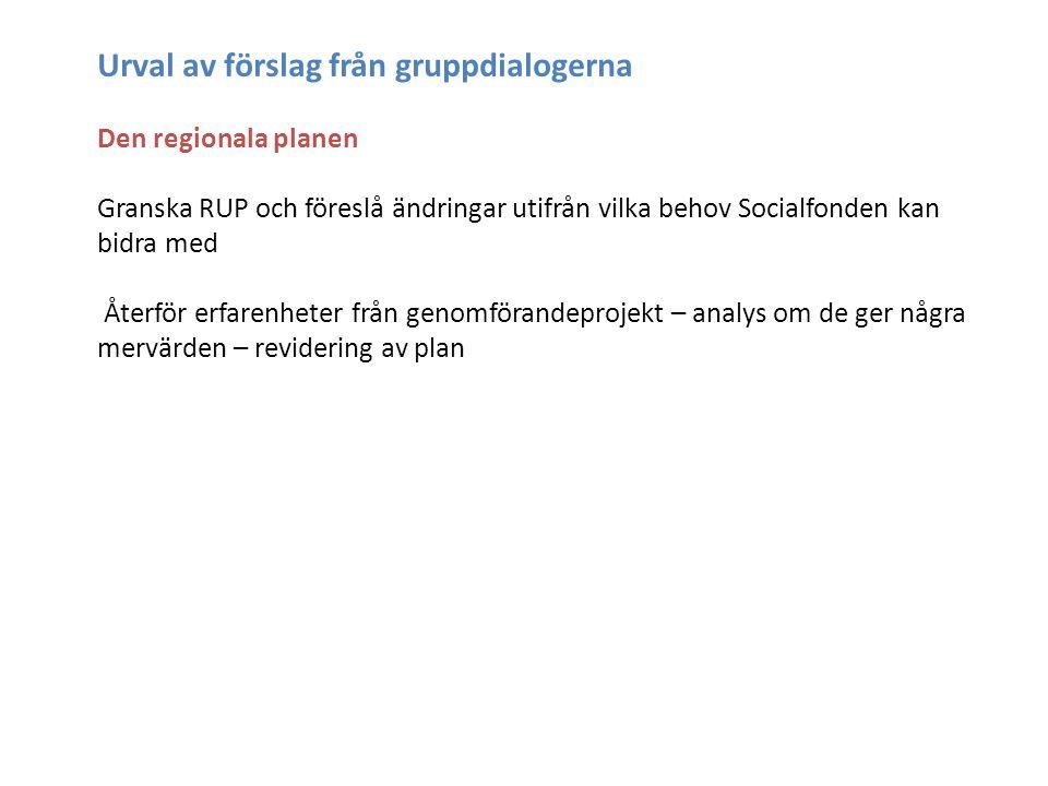 Urval av förslag från gruppdialogerna Den regionala planen Granska RUP och föreslå ändringar utifrån vilka behov Socialfonden kan bidra med Återför erfarenheter från genomförandeprojekt – analys om de ger några mervärden – revidering av plan
