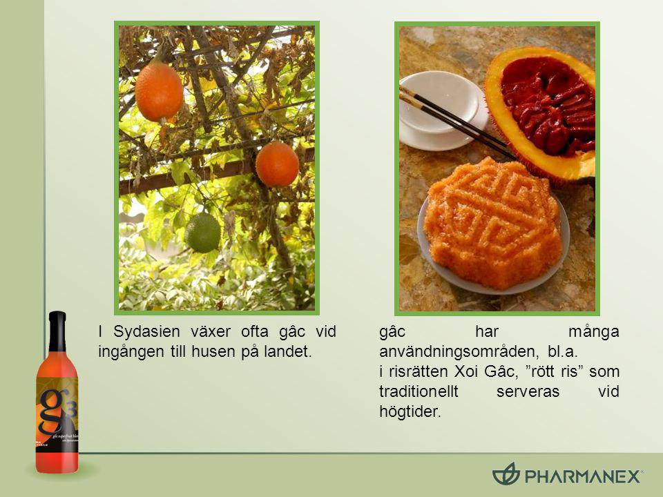 gâc innehåller lykopen, betakaroten och E- vitamin som är kända antioxidanter.