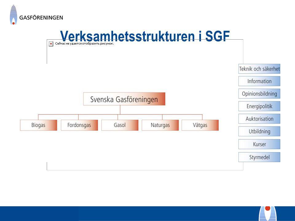 Verksamhetsstrukturen i SGF