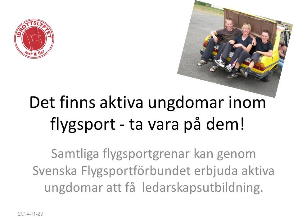 Det finns aktiva ungdomar inom flygsport - ta vara på dem! Samtliga flygsportgrenar kan genom Svenska Flygsportförbundet erbjuda aktiva ungdomar att f