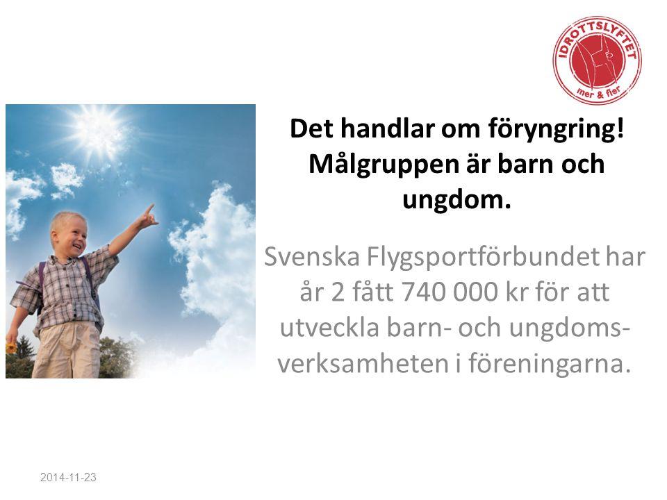 Det handlar om föryngring! Målgruppen är barn och ungdom. Svenska Flygsportförbundet har år 2 fått 740 000 kr för att utveckla barn- och ungdoms- verk