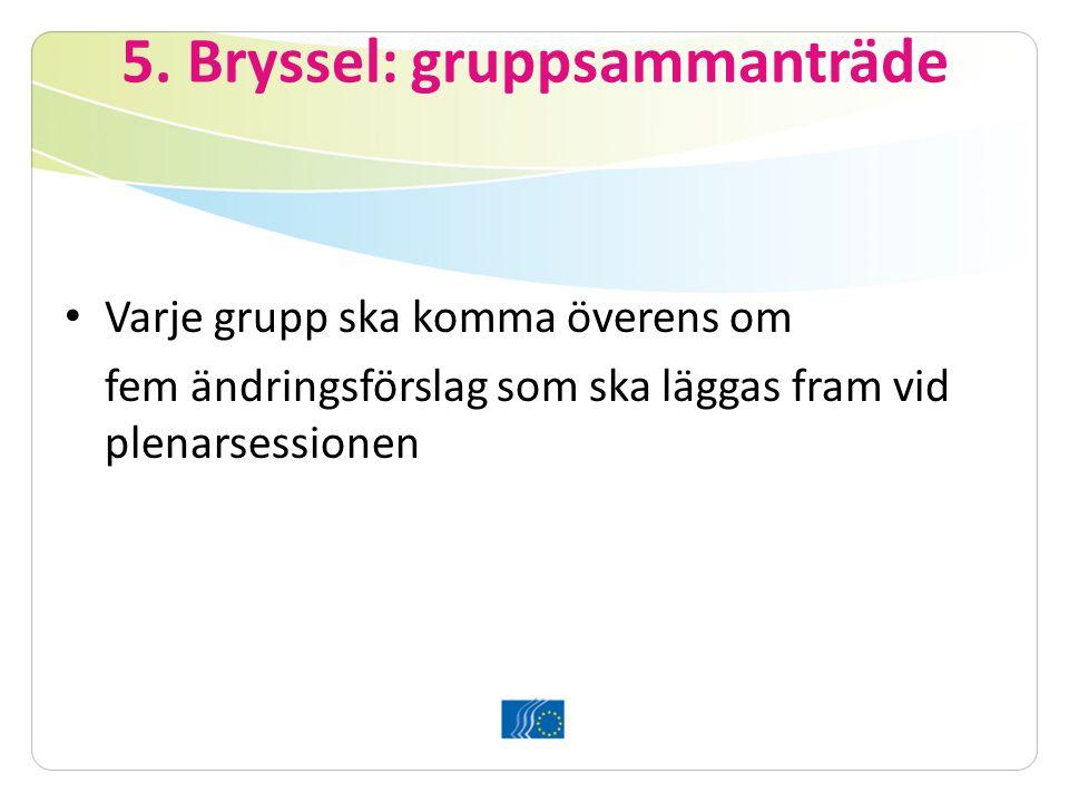 5. Bryssel: gruppsammanträde Varje grupp ska komma överens om fem ändringsförslag som ska läggas fram vid plenarsessionen