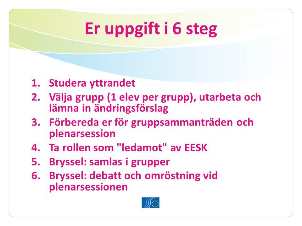 Er uppgift i 6 steg 1.Studera yttrandet 2.Välja grupp (1 elev per grupp), utarbeta och lämna in ändringsförslag 3.Förbereda er för gruppsammanträden och plenarsession 4.Ta rollen som ledamot av EESK 5.Bryssel: samlas i grupper 6.Bryssel: debatt och omröstning vid plenarsessionen