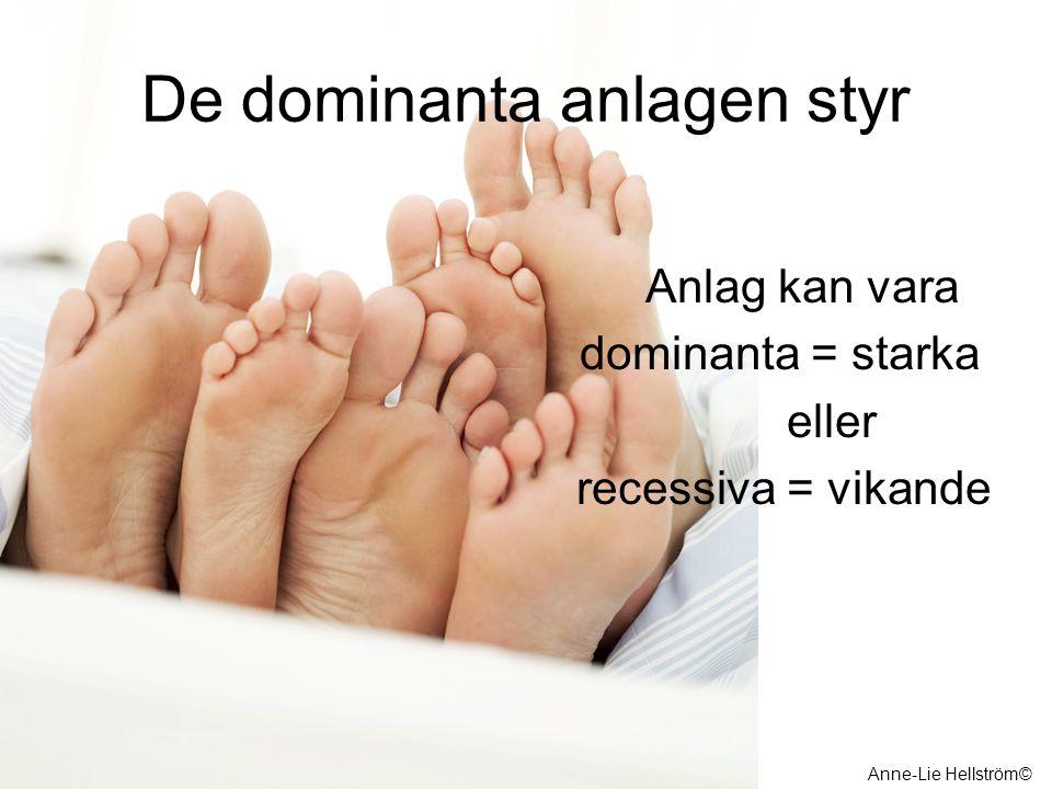 De dominanta anlagen styr Anlag kan vara dominanta = starka eller recessiva = vikande Anne-Lie Hellström©