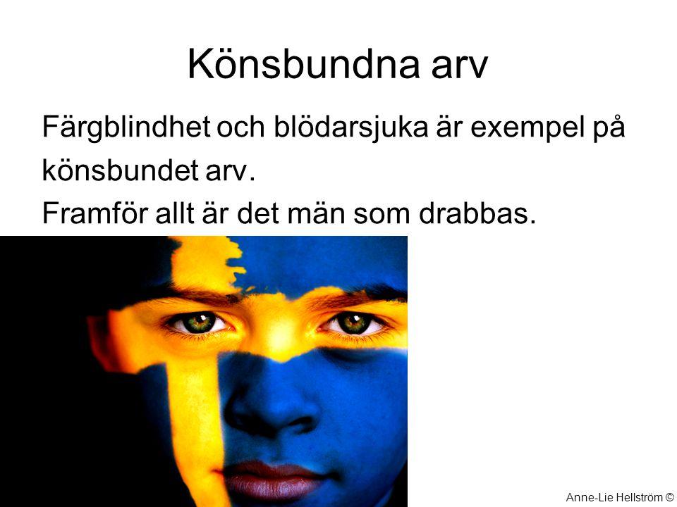 Könsbundna arv Färgblindhet och blödarsjuka är exempel på könsbundet arv. Framför allt är det män som drabbas. Anne-Lie Hellström ©