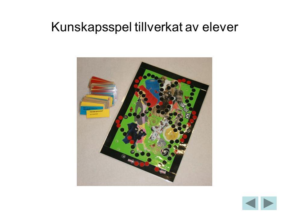 Kunskapsspel tillverkat av elever