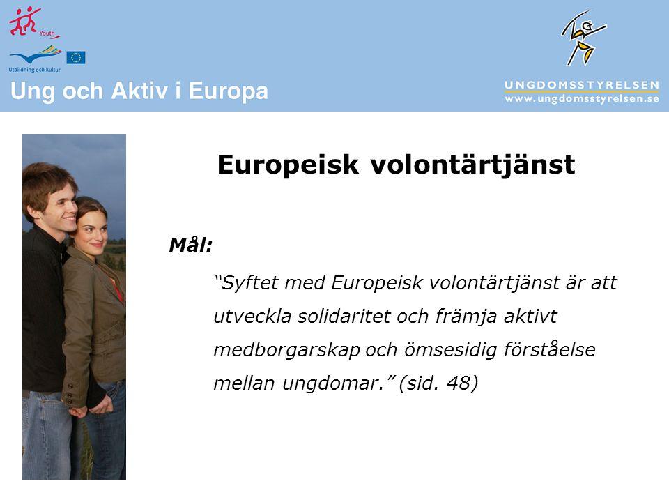 Mål: Syftet med Europeisk volontärtjänst är att utveckla solidaritet och främja aktivt medborgarskap och ömsesidig förståelse mellan ungdomar. (sid.
