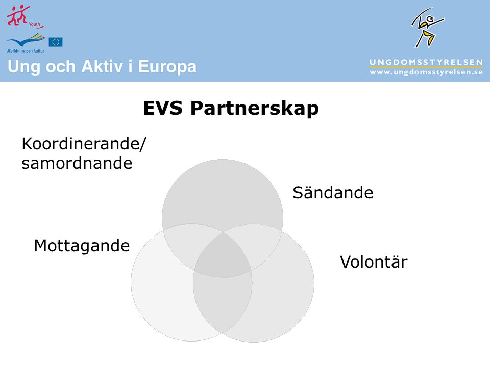 Koordinerande/ samordnande EVS Partnerskap Sändande Volontär Mottagande