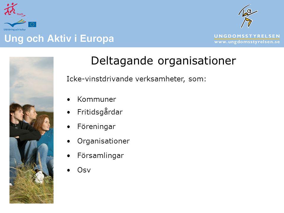 Icke-vinstdrivande verksamheter, som: Kommuner Fritidsgårdar Föreningar Organisationer Församlingar Osv Deltagande organisationer