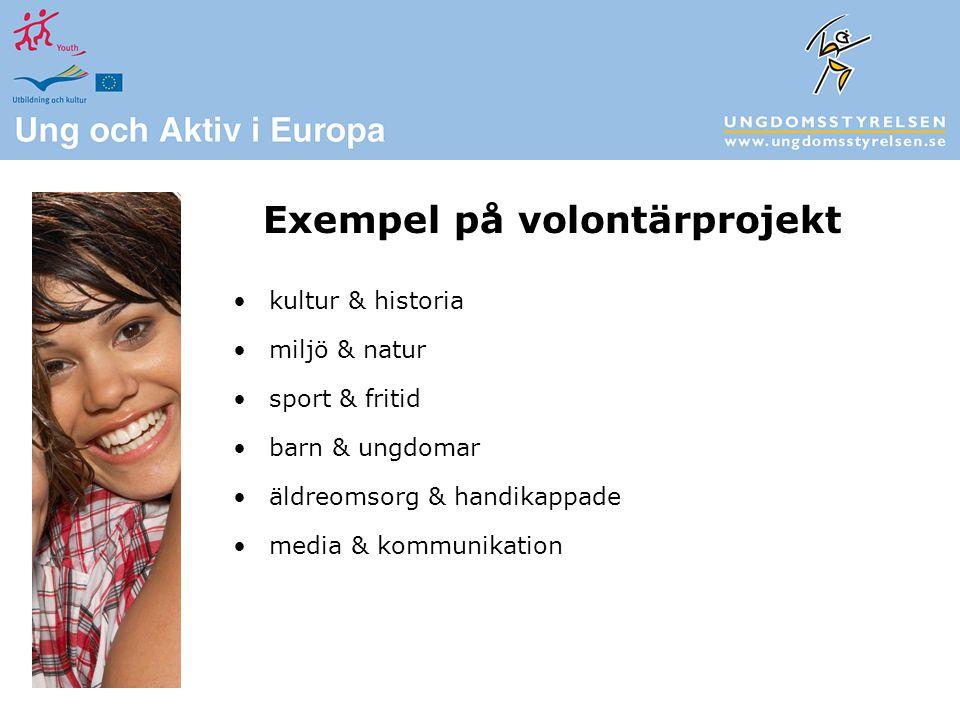 kultur & historia miljö & natur sport & fritid barn & ungdomar äldreomsorg & handikappade media & kommunikation Exempel på volontärprojekt