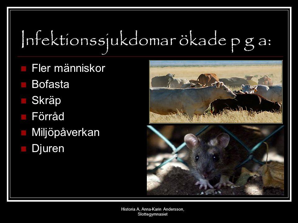 Historia A, Anna-Karin Andersson, Slottegymnasiet Infektionssjukdomar ökade p g a: Fler människor Bofasta Skräp Förråd Miljöpåverkan Djuren