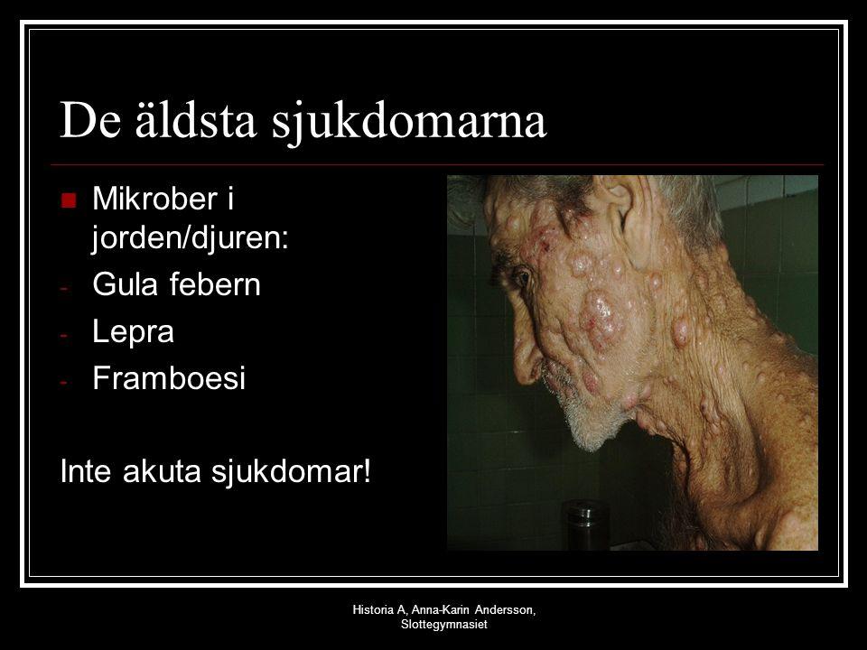 Historia A, Anna-Karin Andersson, Slottegymnasiet De äldsta sjukdomarna Mikrober i jorden/djuren: - Gula febern - Lepra - Framboesi Inte akuta sjukdom