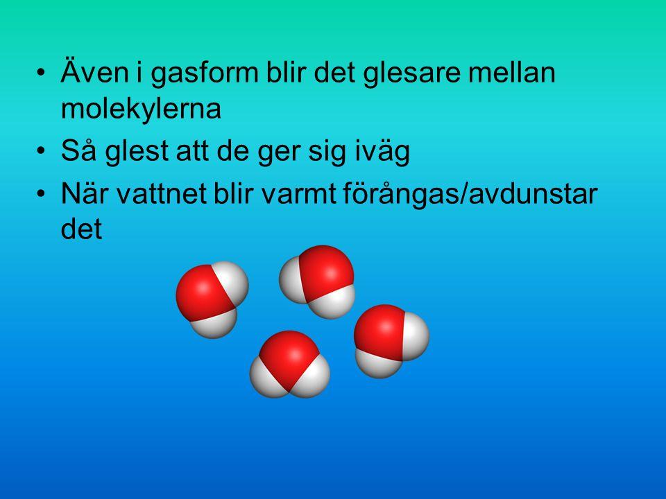 Även i gasform blir det glesare mellan molekylerna Så glest att de ger sig iväg När vattnet blir varmt förångas/avdunstar det