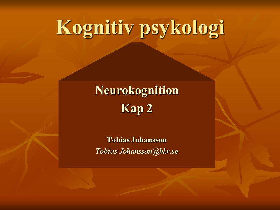 Kognitiv psykologi Neurokognition Kap 2 Tobias Johansson Tobias.Johansson@hkr.se