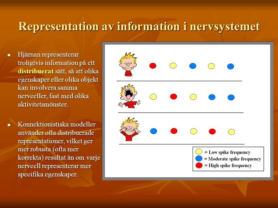 Representation av information i nervsystemet Hjärnan representerar troligtvis information på ett distribuerat sätt, så att olika egenskaper eller olik