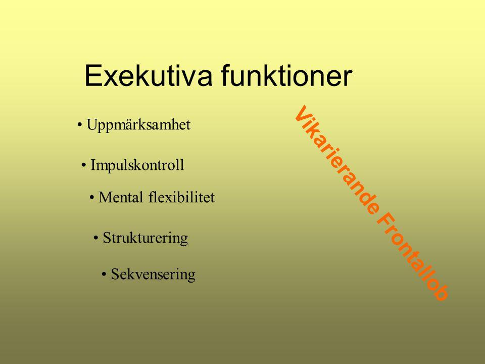 Exekutiva funktioner Uppmärksamhet Impulskontroll Mental flexibilitet Strukturering Sekvensering Vikarierande Frontallob