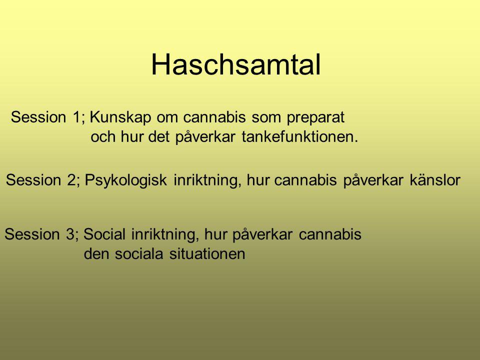 Haschsamtal Session 1; Kunskap om cannabis som preparat och hur det påverkar tankefunktionen. Session 2; Psykologisk inriktning, hur cannabis påverkar