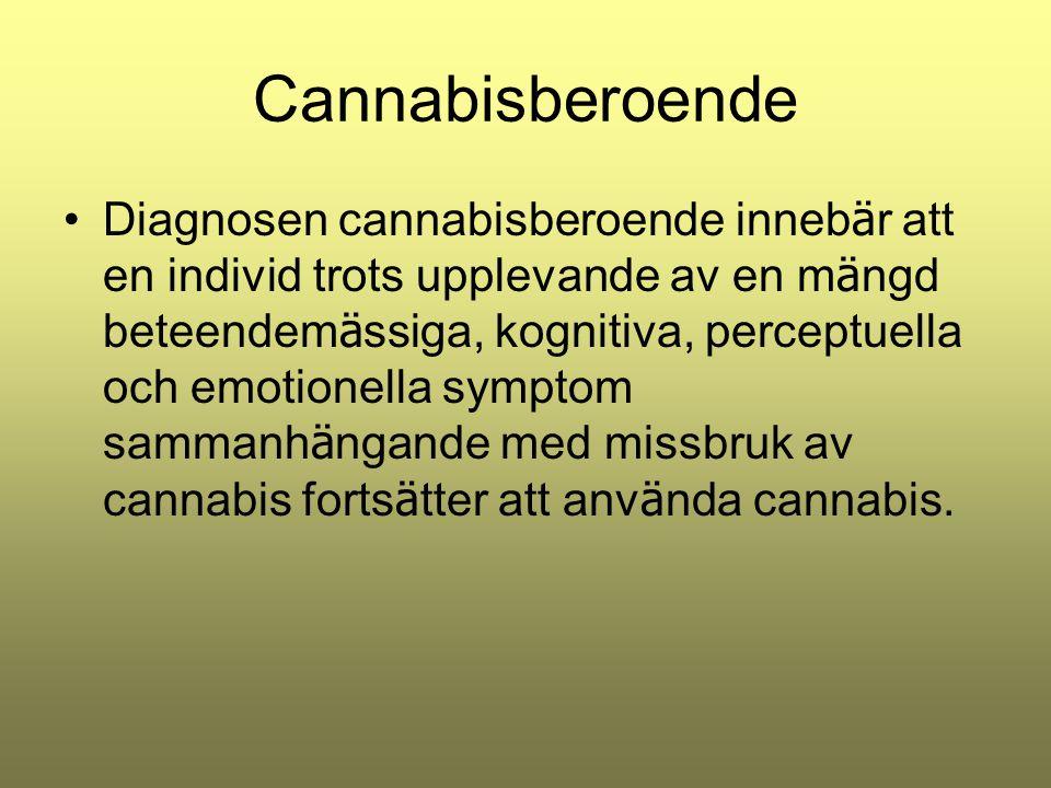 Cannabisberoende Diagnosen cannabisberoende inneb ä r att en individ trots upplevande av en m ä ngd beteendem ä ssiga, kognitiva, perceptuella och emo
