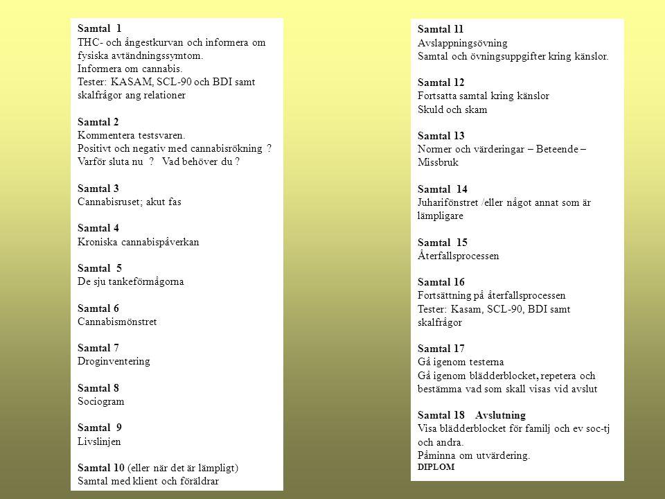 Samtal 11 Avslappningsövning Samtal och övningsuppgifter kring känslor. Samtal 12 Fortsatta samtal kring känslor Skuld och skam Samtal 13 Normer och v