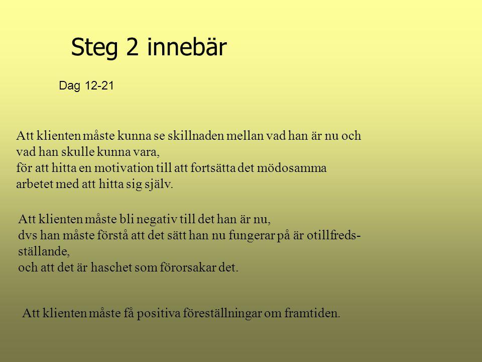 Steg 2 innebär Att klienten måste kunna se skillnaden mellan vad han är nu och vad han skulle kunna vara, för att hitta en motivation till att fortsät
