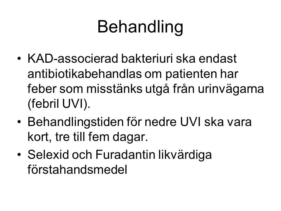 Behandling KAD-associerad bakteriuri ska endast antibiotikabehandlas om patienten har feber som misstänks utgå från urinvägarna (febril UVI). Behandli