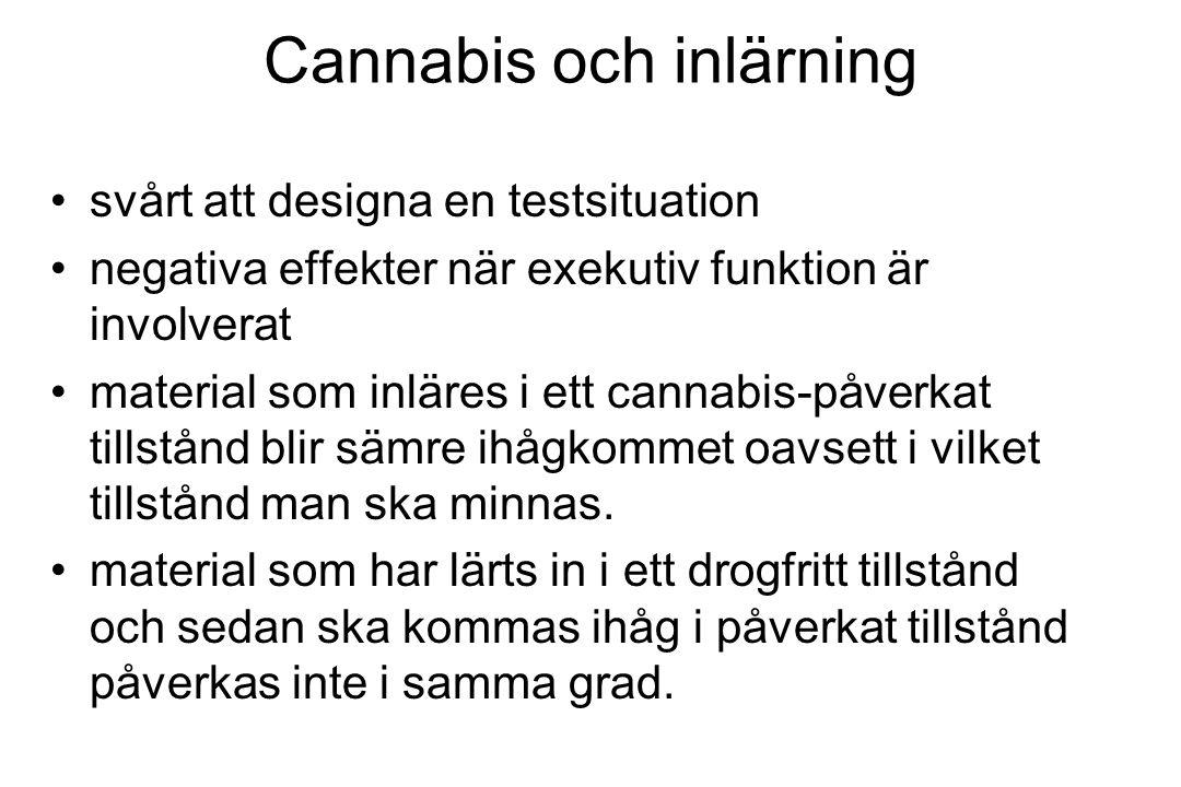 Cannabis och inlärning svårt att designa en testsituation negativa effekter när exekutiv funktion är involverat material som inläres i ett cannabis-på