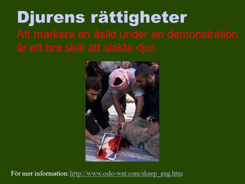 Djurens rättigheter Att markera en åsikt under en demonstration är ett bra skäl att slakta djur.