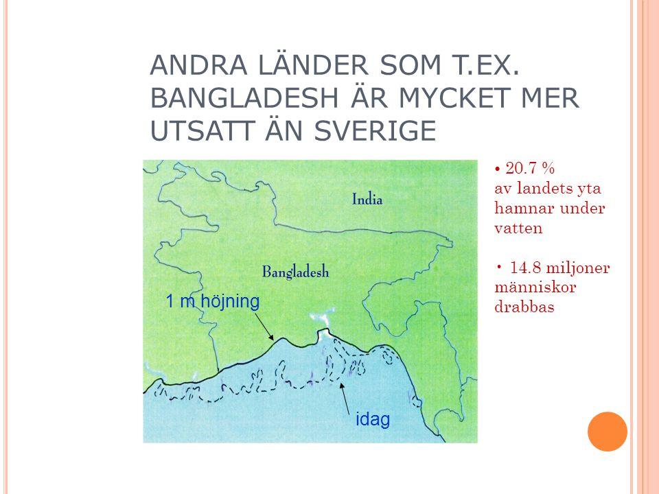 idag 1 m höjning 20.7 % av landets yta hamnar under vatten 14.8 miljoner människor drabbas ANDRA LÄNDER SOM T.EX.