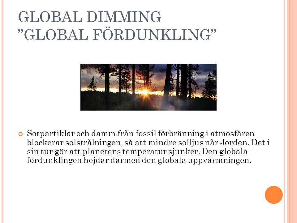 GLOBAL DIMMING GLOBAL FÖRDUNKLING Sotpartiklar och damm från fossil förbränning i atmosfären blockerar solstrålningen, så att mindre solljus når Jorden.