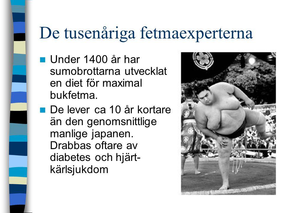 De tusenåriga fetmaexperterna Under 1400 år har sumobrottarna utvecklat en diet för maximal bukfetma.