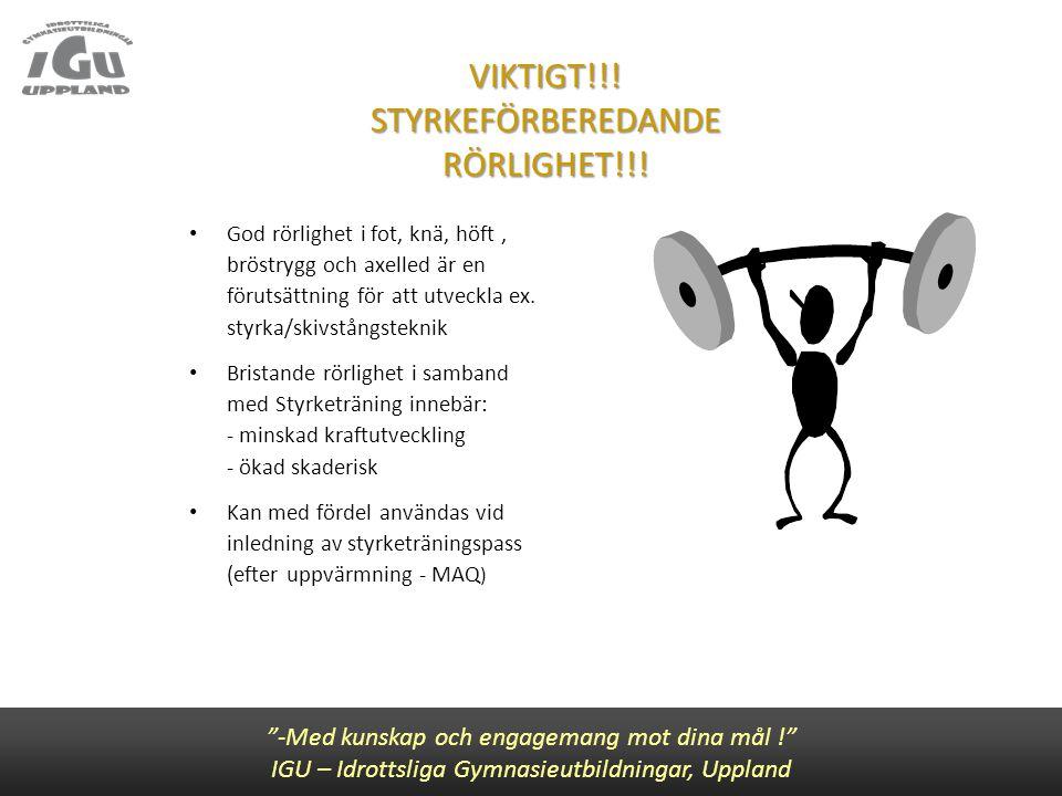 VIKTIGT!!! STYRKEFÖRBEREDANDE RÖRLIGHET!!! God rörlighet i fot, knä, höft, bröstrygg och axelled är en förutsättning för att utveckla ex. styrka/skivs